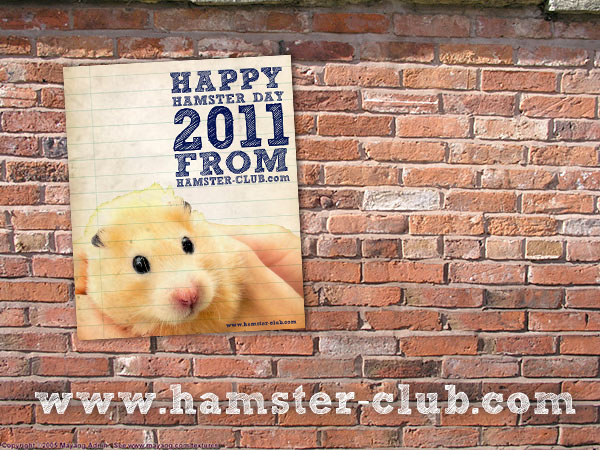 The Hamster Day