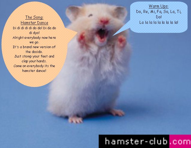 The Hampster Dance Party Clean